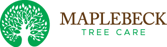 maplebeck tree care, professional arboriculture