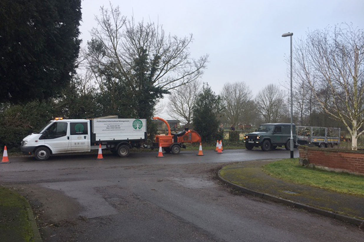 rushcliffe borough council, maplebeck tree care